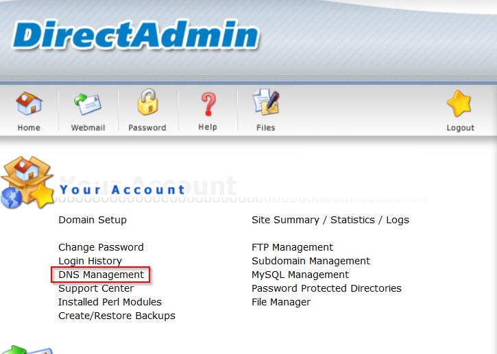 DirectAdmin DNS beheer link